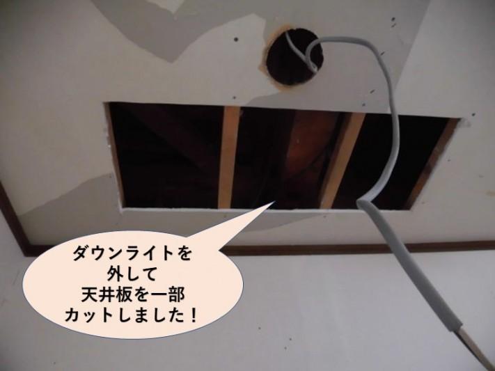 岸和田市のダウンライトを外して天井板を一部カット