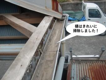 泉佐野市の雨樋は掃除しました
