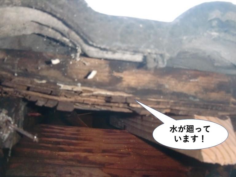 岸和田市の軒先水が廻っています