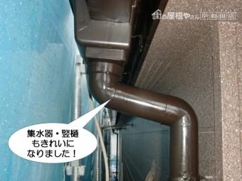 和泉市の集水器・竪樋も塗装