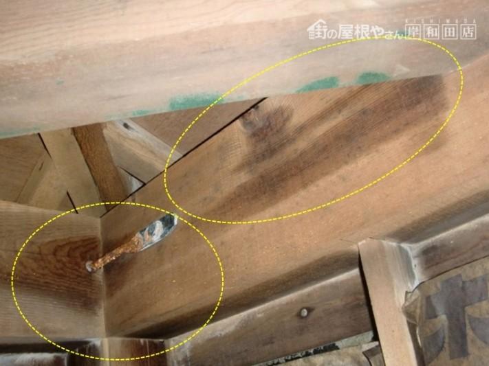 泉大津市の小屋裏に雨が浸入!