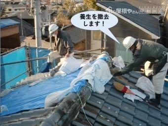 泉佐野市の屋根の養生を撤去します