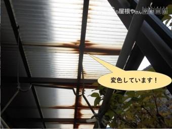 和泉市の波板が変色しています