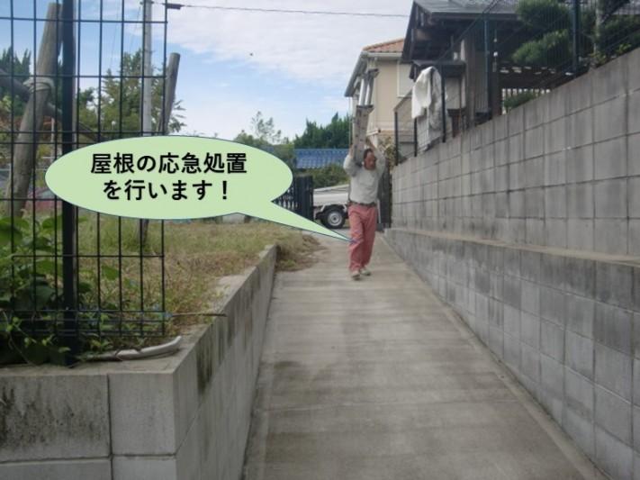 岸和田市の屋根の応急処置を行います!