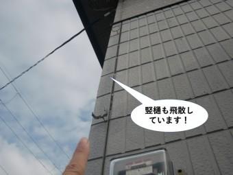 泉大津市の竪樋も飛散しています