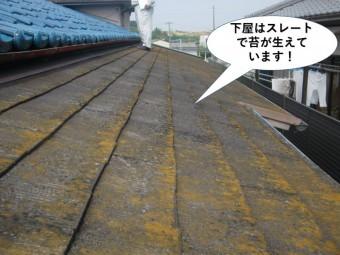 岸和田市の下屋はスレートで苔が生えています