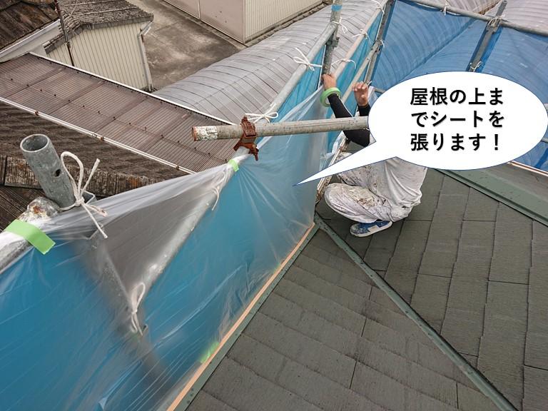 岸和田市の屋根の上までシートを張ります