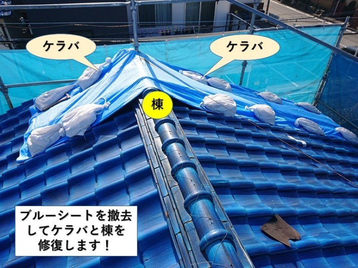 岸和田市のケラバと棟を修復します