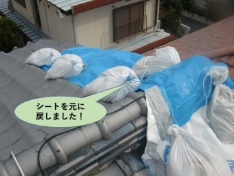 岸和田市の屋根のシートを元に戻しました!
