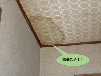 泉北郡忠岡町の玄関の天井の雨染み