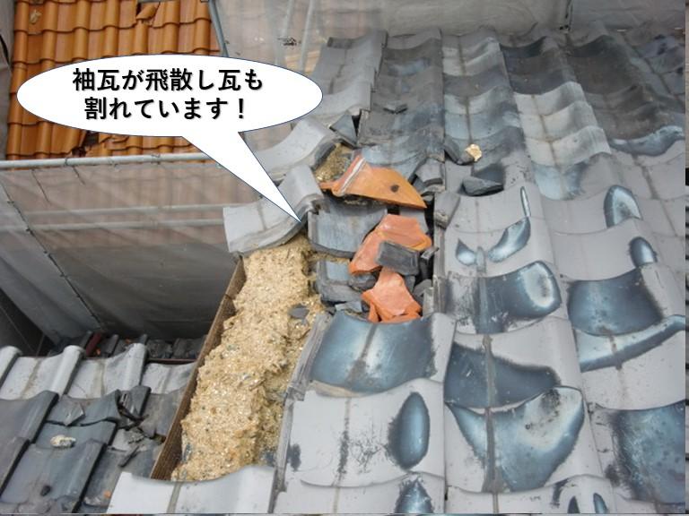 岸和田市の袖瓦が飛散し瓦も割れています