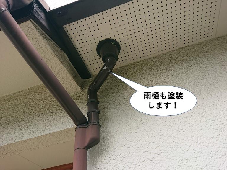和泉市の雨樋も塗装します