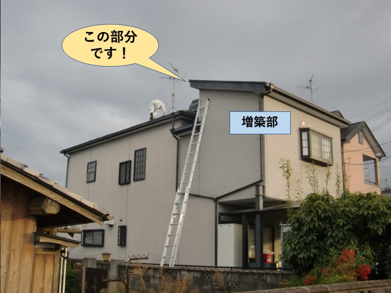 貝塚市の増築部の屋根