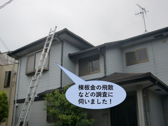泉南市の棟板金飛散などの調査