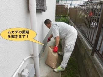岸和田市の家の周りにムカデの薬剤を撒きます