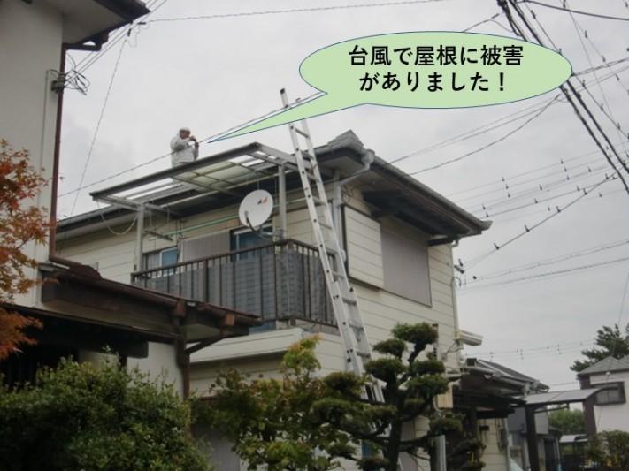 泉大津市の台風の被害の調査