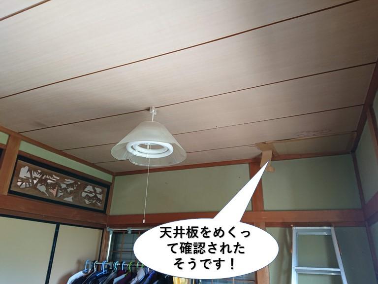 泉佐野市の天井板をめくって確認されたそうです
