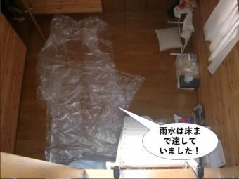 和泉市で雨水は床まで達していました