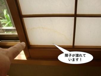 岸和田市の障子が濡れてます