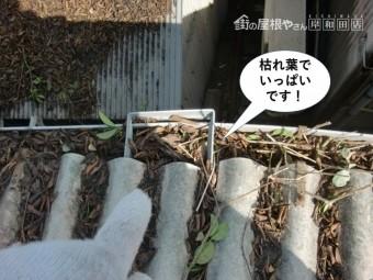岸和田市の倉庫の雨樋が枯れ葉でいっぱいです