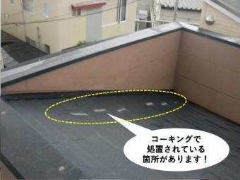 熊取町の屋根をコーキングで防水されています