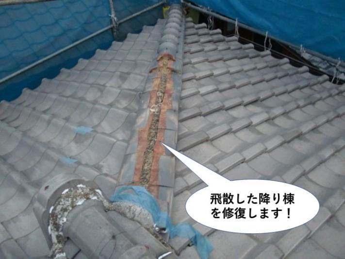 泉南市の飛散した降り棟を修復します