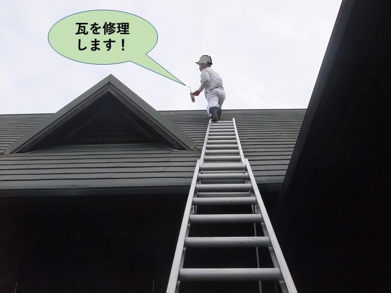 和泉市でコーキングで瓦を修理