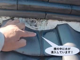 岸和田市の屋根の棟の中に雨が浸入