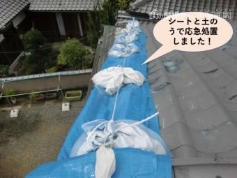 岸和田市の屋根をシートと土のうで応急処置