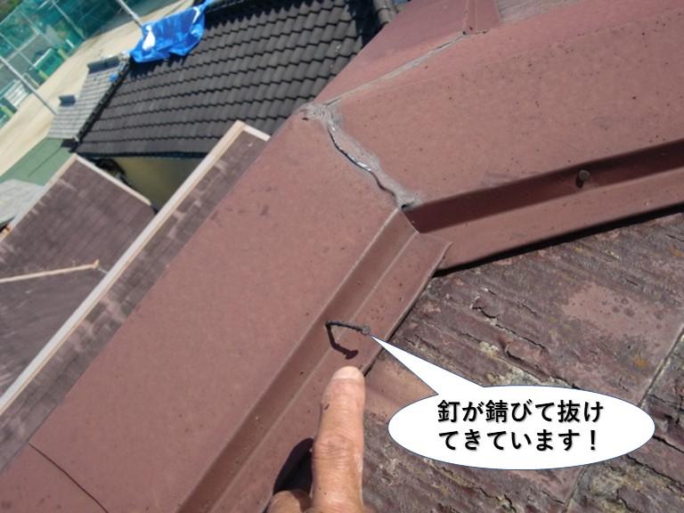 泉大津市の棟板金の釘が緩んで抜けてきています