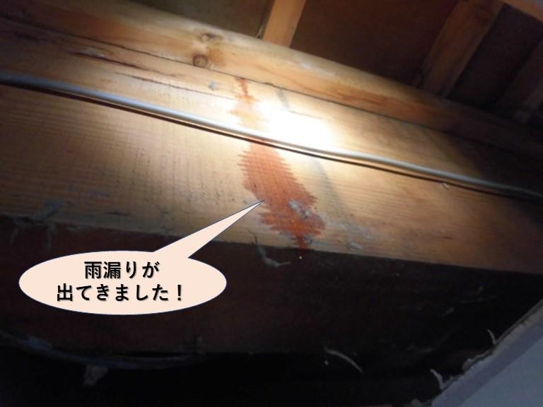 岸和田市の天井裏に雨漏りが出てきました