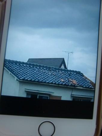 岸和田市の台風の被害当時の写真