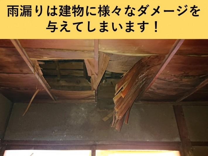 岸和田市・雨漏り
