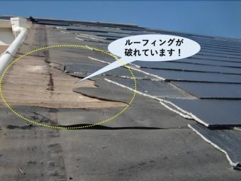 岸和田市の屋根のルーフィングが破れています