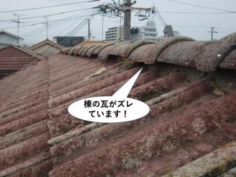 忠岡町の棟の瓦がズレています