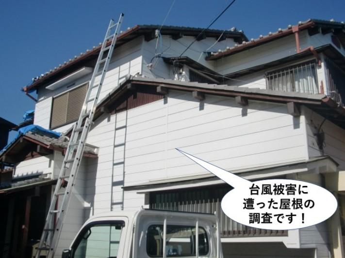 貝塚市の台風被害に遭った屋根の調査です