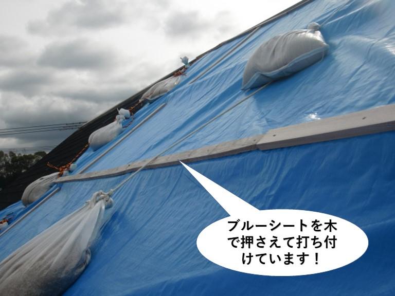 熊取町の屋根をブルーシートを木で押さえて打ち付けています