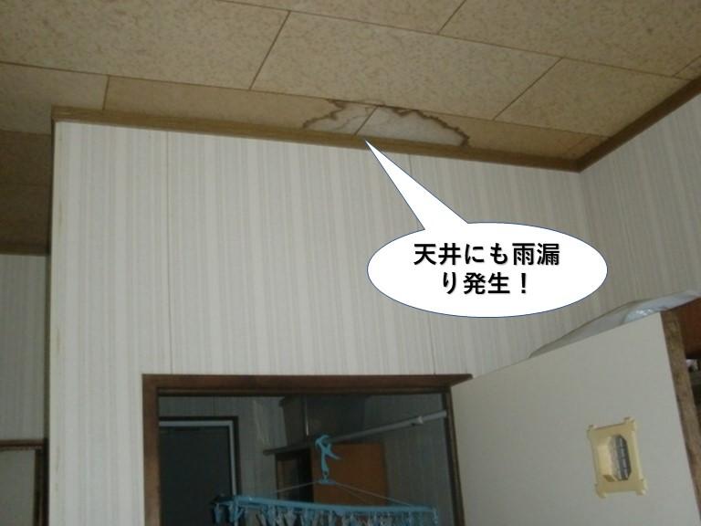 熊取町で天井にも雨漏り発生