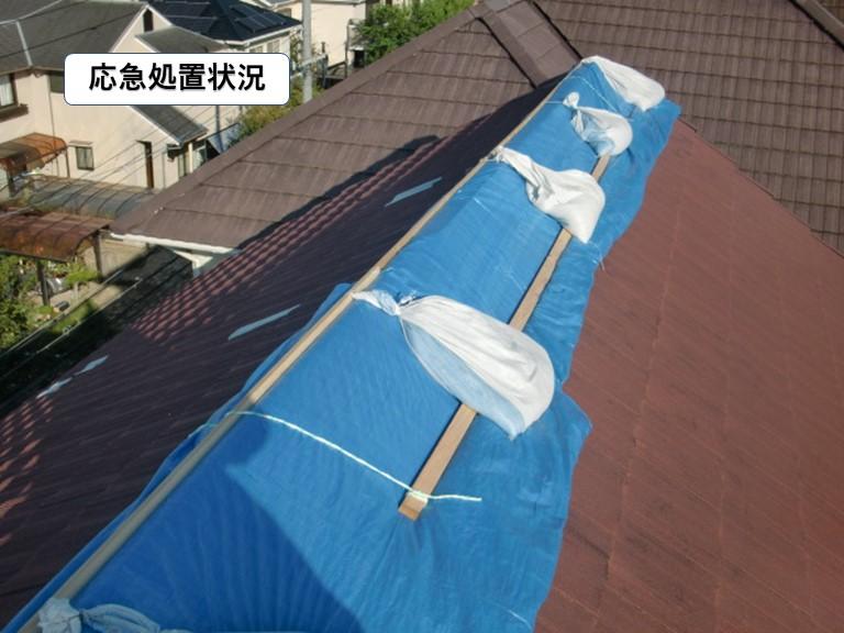 貝塚市の屋根の応急処置状況