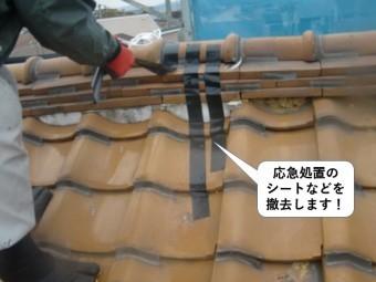 泉大津市の屋根の応急処置のシートなどを撤去します