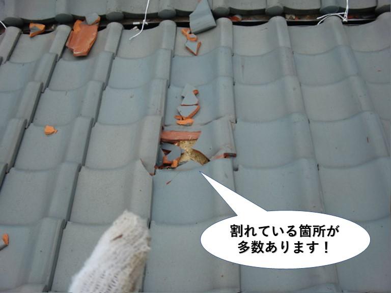 和泉市の屋根瓦が割れた箇所が多数あります
