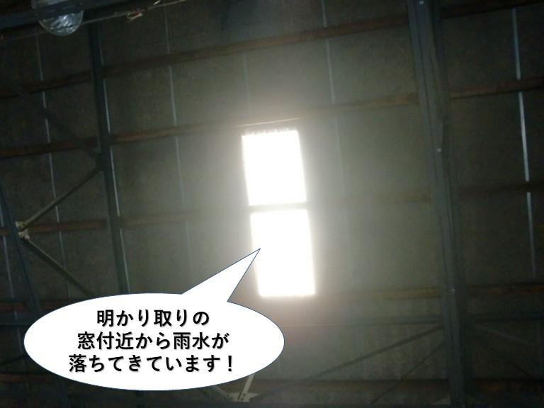 和泉市の倉庫の明かり取りの窓付近から雨水が落ちてきています