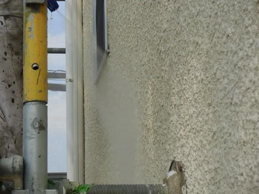 岸和田市極楽寺町で高圧洗浄でカビ除去する外壁・屋根塗装着工