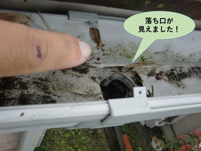岸和田市の樋の落ち口が見えました