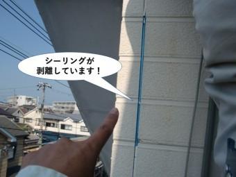 忠岡町の外壁のシーリングが剥離