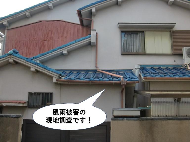 岸和田市の風雨被害の現地調査