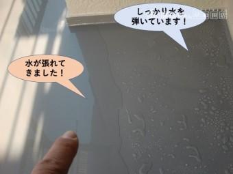 岸和田市のベランダ防水状況
