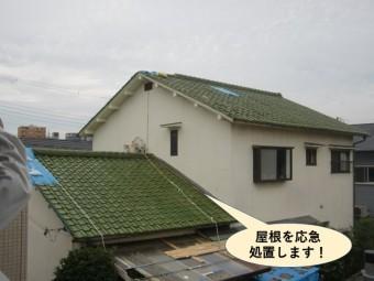 岸和田市の屋根を応急処置します