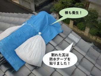 岸和田市の棟も養生