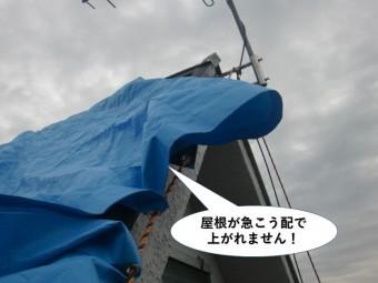 貝塚市の屋根が急こう配で上がれません